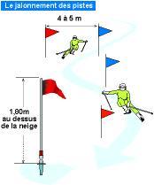 ski slalom regeln